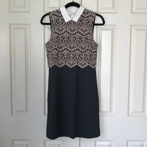 Halogen Collared Lace Dress 4P